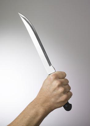 Homicide dans la région de Montreux, suspecte arrêtée en France voisine